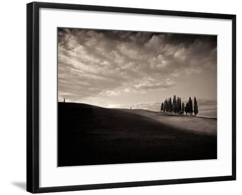 Cypress Wood-Marco Carmassi-Framed Art Print