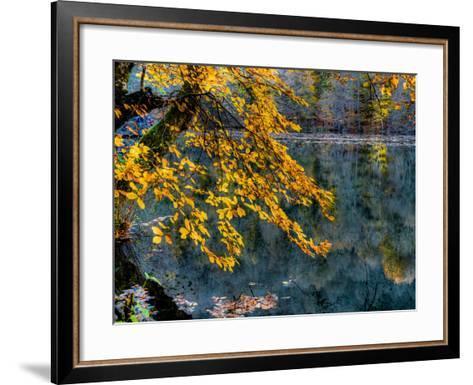 Yellow Leaves2-Nejdet Duzen-Framed Art Print