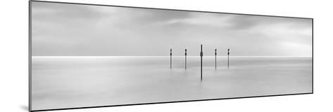 Sentinels-Doug Chinnery-Mounted Photographic Print