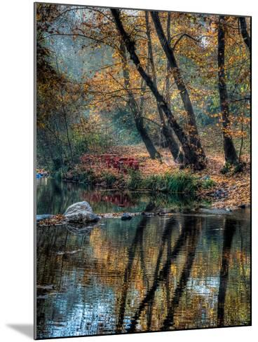 Reflection of Autumn-Nejdet Duzen-Mounted Photographic Print