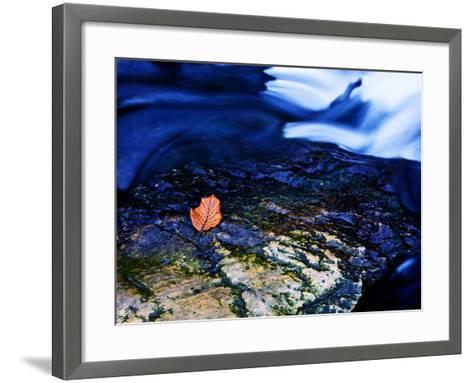 Blue-Doug Chinnery-Framed Art Print
