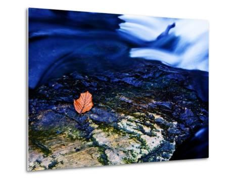 Blue-Doug Chinnery-Metal Print