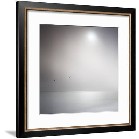 Three Birds Xi-Doug Chinnery-Framed Art Print