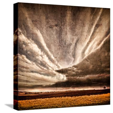 Nothing to Fear-Philippe Sainte-Laudy-Stretched Canvas Print