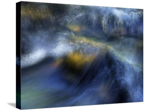 Sun Scribbles in the Evening-Ursula Abresch-Stretched Canvas Print