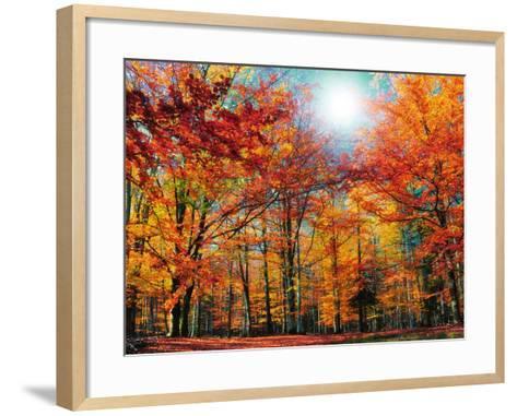 Camouflage-Philippe Sainte-Laudy-Framed Art Print