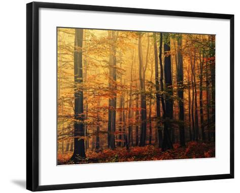 Meet Me in the Morning-Philippe Sainte-Laudy-Framed Art Print