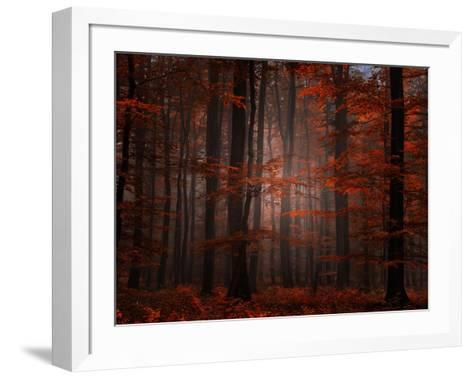 Spiritual Wood-Philippe Sainte-Laudy-Framed Art Print