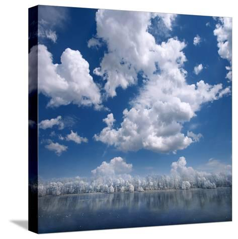 Ethereal-Philippe Sainte-Laudy-Stretched Canvas Print