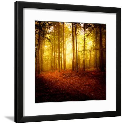 The Smell of Autumn-Philippe Sainte-Laudy-Framed Art Print