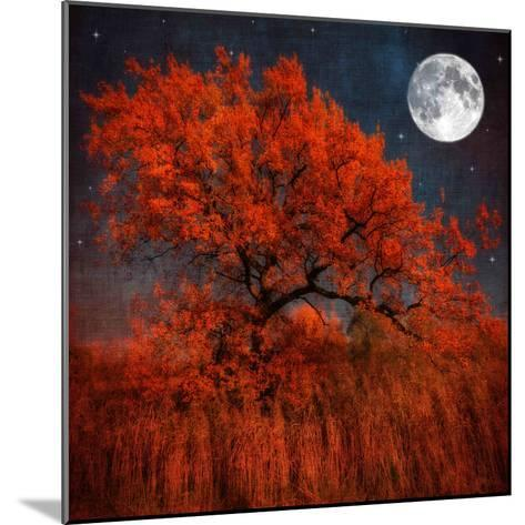 Halloween Color-Philippe Sainte-Laudy-Mounted Photographic Print