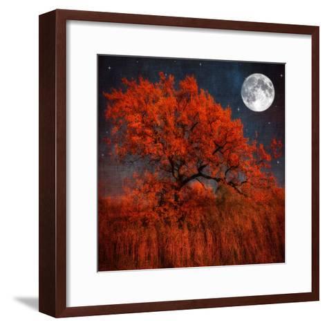 Halloween Color-Philippe Sainte-Laudy-Framed Art Print