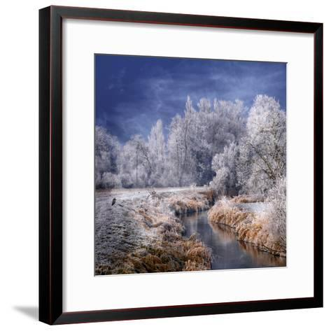 Winter Stream-Philippe Sainte-Laudy-Framed Art Print