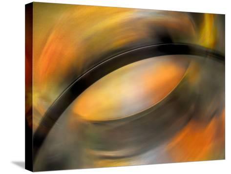 Autumn Palette-Ursula Abresch-Stretched Canvas Print