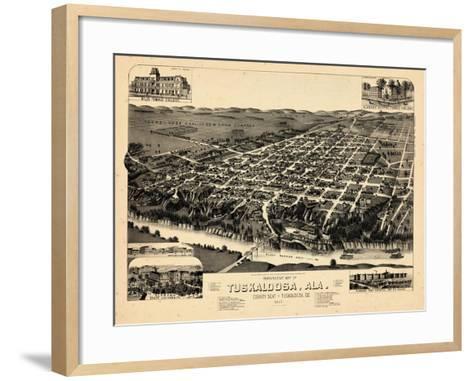 1887, Tuskaloosa Bird's Eye View, Alabama, United States--Framed Art Print