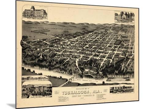 1887, Tuskaloosa Bird's Eye View, Alabama, United States--Mounted Giclee Print
