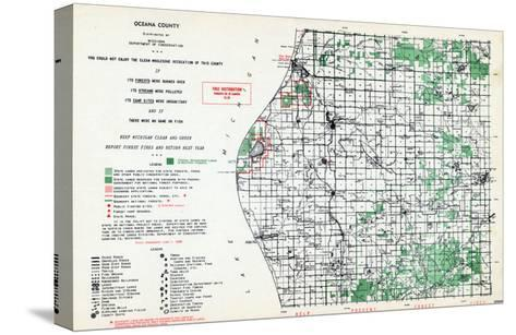 1955, Oceana County, Michigan, United States--Stretched Canvas Print