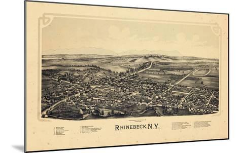 1890, Rhinebeck 1890 Bird's Eye View, New York, United States--Mounted Giclee Print