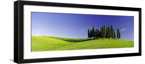 Trees on a Landscape, Val D'Orcia, Siena Province, Tuscany, Italy--Framed Art Print