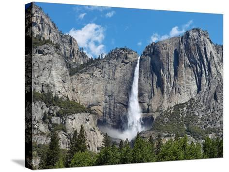 View of Yosemite Falls in Spring, Yosemite National Park, California, USA--Stretched Canvas Print
