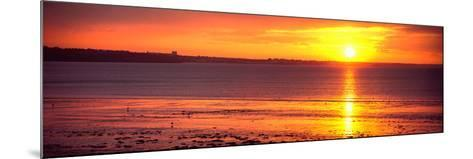 Sunrise over the Beach, Cap Coz, Fouesnant, Finistere, Brittany, France--Mounted Photographic Print