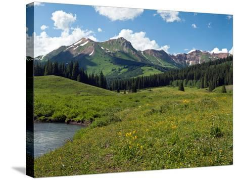 Man Fly-Fishing in Slate River, Crested Butte, Gunnison County, Colorado, USA--Stretched Canvas Print