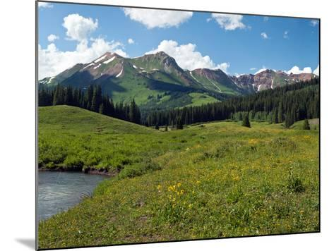 Man Fly-Fishing in Slate River, Crested Butte, Gunnison County, Colorado, USA--Mounted Photographic Print
