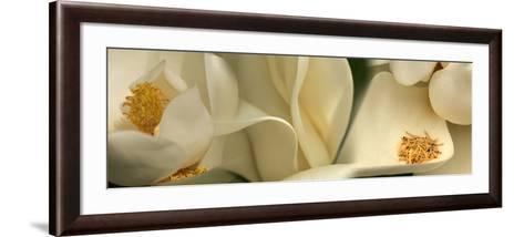 Magnolia Heaven Flowers--Framed Art Print