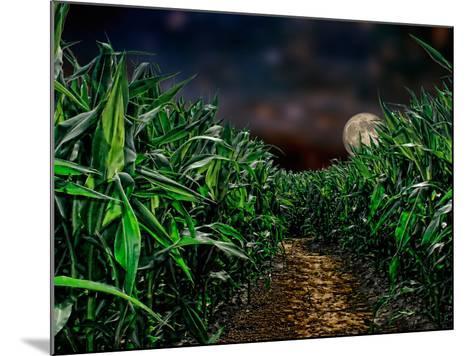 Dark Corn Field--Mounted Photographic Print