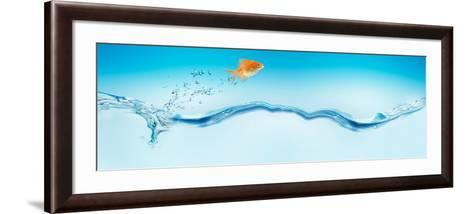 Goldfish Jumping Out of Water--Framed Art Print