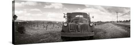 Old Truck in a Field, Napa Valley, California, USA--Stretched Canvas Print
