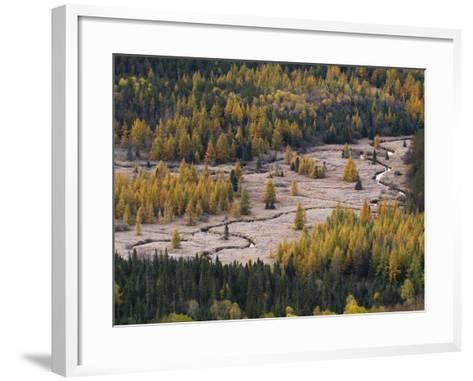 Frost Blankets Great Meadow in Adirondack Park-Michael Melford-Framed Art Print