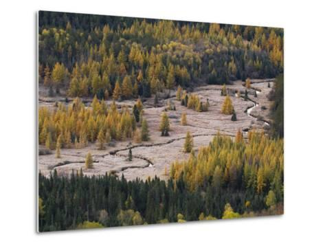 Frost Blankets Great Meadow in Adirondack Park-Michael Melford-Metal Print