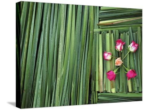 A Flower Carpet for Easter-Raul Touzon-Stretched Canvas Print