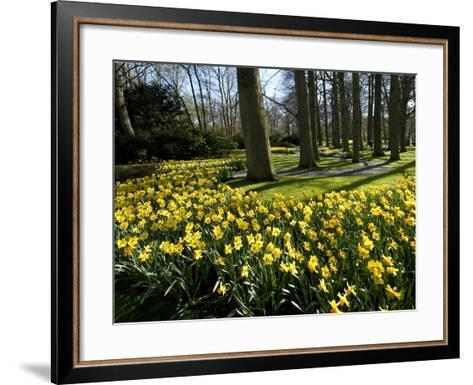 Daffodils in Bloom around Trees in a Public Garden-James P^ Blair-Framed Art Print