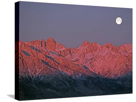 The Moon Sets at Sunrise over the Sierra Nevada and Mount Whitney-Gordon Wiltsie-Stretched Canvas Print