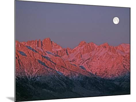 The Moon Sets at Sunrise over the Sierra Nevada and Mount Whitney-Gordon Wiltsie-Mounted Photographic Print