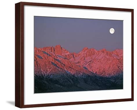 The Moon Sets at Sunrise over the Sierra Nevada and Mount Whitney-Gordon Wiltsie-Framed Art Print