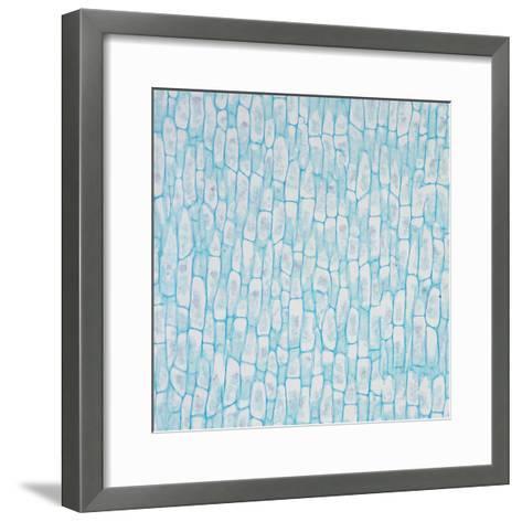 Microscopic Image of Coconut Fiber Cells-Greg Dale-Framed Art Print