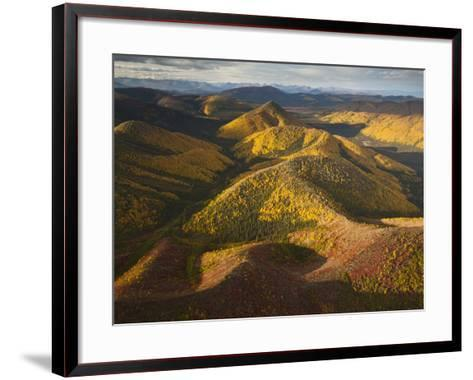 Poplars and Tundra in Fall Colors-Michael Melford-Framed Art Print
