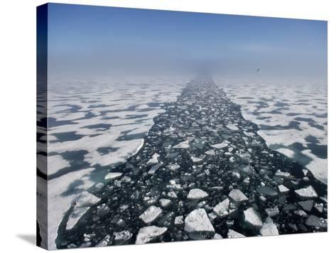 Arctic Landscape in the Hinlopen Strait-Keenpress-Stretched Canvas Print