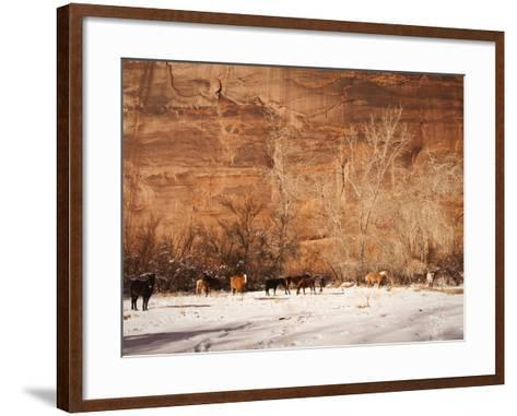 A Herd of Horses in a Snowy Landscape at the Bottom of a Cliff-James Forte-Framed Art Print