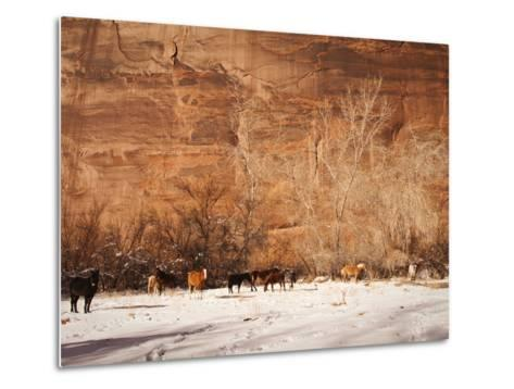 A Herd of Horses in a Snowy Landscape at the Bottom of a Cliff-James Forte-Metal Print