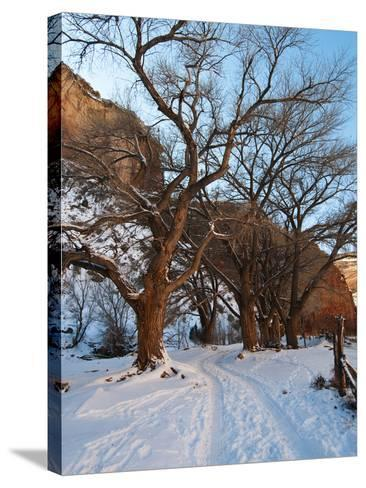 Tire Tracks in Snow Leading Up to Canyon De Chelly Cliffs-James Forte-Stretched Canvas Print