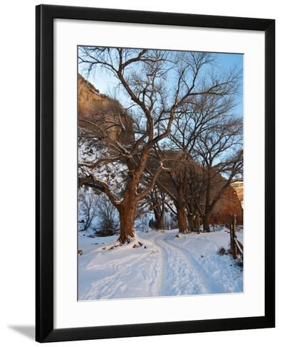 Tire Tracks in Snow Leading Up to Canyon De Chelly Cliffs-James Forte-Framed Art Print