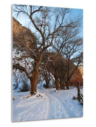 Tire Tracks in Snow Leading Up to Canyon De Chelly Cliffs-James Forte-Metal Print