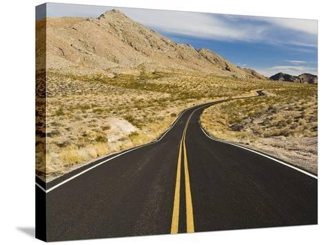 A Road Through and Arid Desert Landscape-James Forte-Stretched Canvas Print
