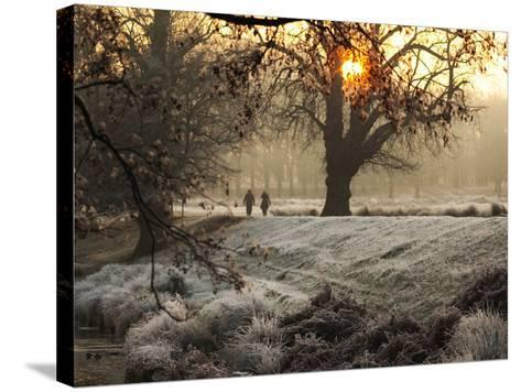A Couple Walk in the Winter in Richmond Park-Alex Saberi-Stretched Canvas Print