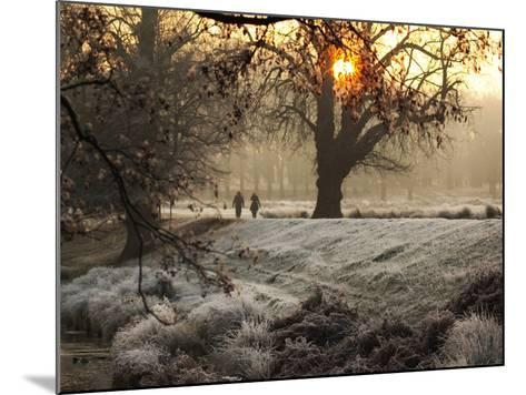 A Couple Walk in the Winter in Richmond Park-Alex Saberi-Mounted Photographic Print