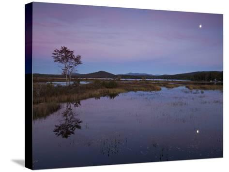 Moonrise over Big Simon Pond-Michael Melford-Stretched Canvas Print